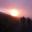 A walk on Mt Leinster for Earth Day 2014, organised by Cathy Fitzgerald. Photo: C. Fitzgerald